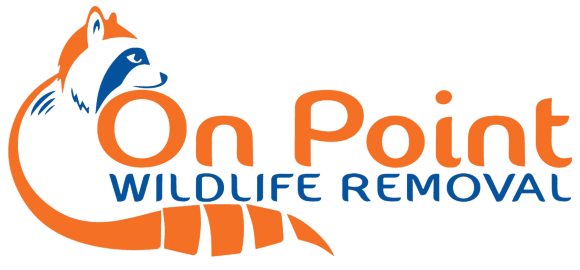 Florida Animal Control Service - On Point Wildlife Removal (321) 423-2713